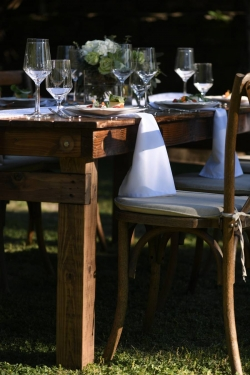 Table Napkin Rentals
