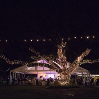 Outdoor Lighting for Event and Tent