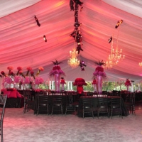 Ambient Lighting Black Chiavari Chairs Frame Tent Rental