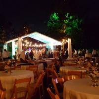Wedding Reception Arrangement