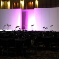 Staging and Tablescape