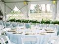 Elegant Tablescape for Reception
