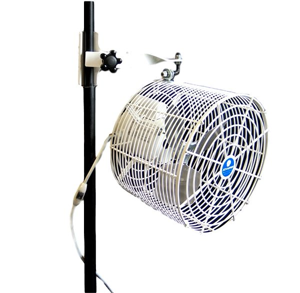 Tent Mounted Fan Rental